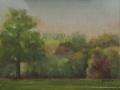 Waveny Park in Spring